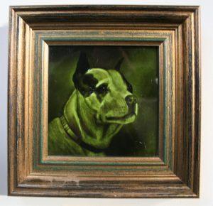 A rare portrait of a Staffordshire Bull Terrier